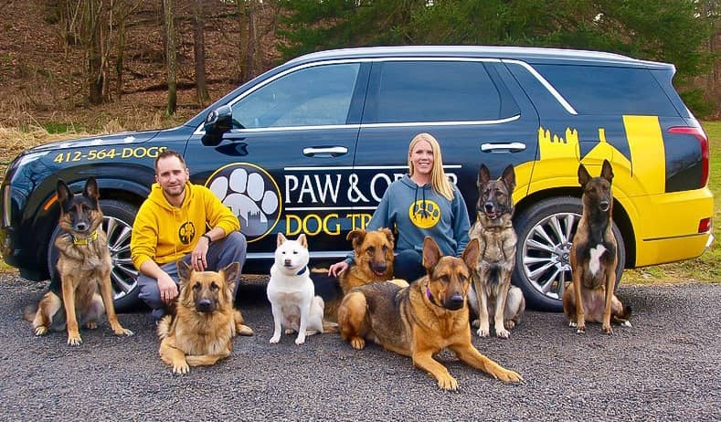 paw and order owners with their dogs